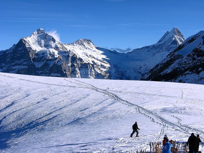 Foto: Andreas Koller / Schneeschuh Tour / Schneeschuh-Trail aufs Faulhorn (2681m) / Blick über die Fläche unterhalb des Gipfels zu Wetterhorn (3701 m), Bärglistock (3656 m) und Schreckhorn (4078 m) / 06.01.2009 23:21:15