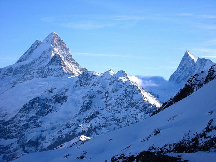 Foto: Andreas Koller / Schneeschuh Tour / Schneeschuh-Trail aufs Faulhorn (2681m) / Schreckhorn (4078 m) und Finsteraarhorn (4273 m) / 06.01.2009 23:19:24