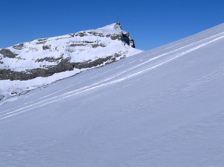 Foto: Andreas Koller / Ski Tour / Vom Gemmipass auf das Daubenhorn (2942 m) / Das Steghorn (3146 m) / 08.01.2009 01:21:22