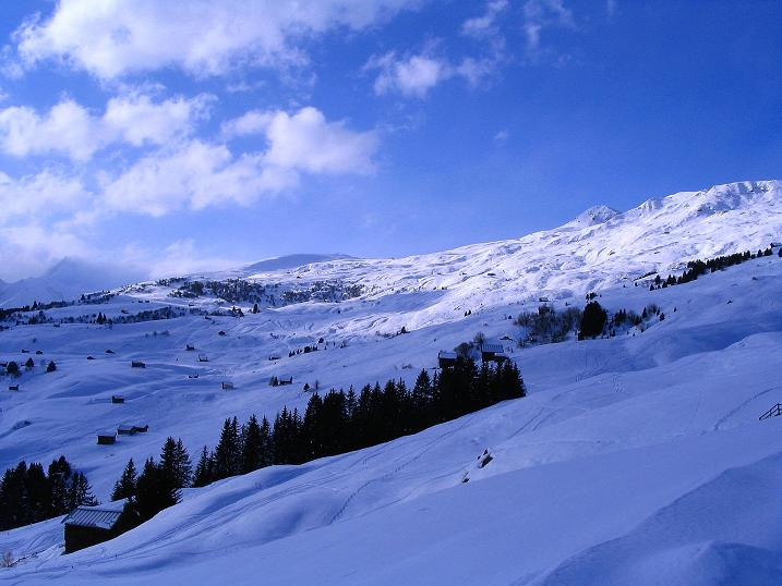 Foto: Andreas Koller / Ski Tour / Aus dem Val Lumnezia auf den Piz Sezner (2309m) / Ideales Skitourengelände zum Piz Sezner / 08.01.2009 22:06:35