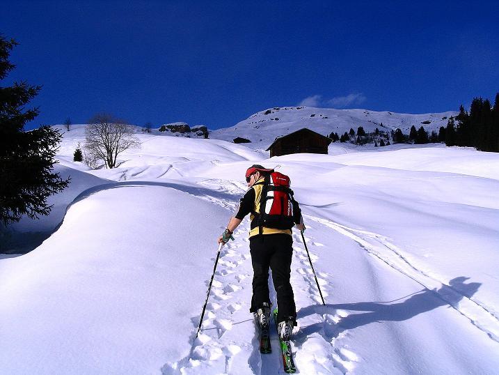 Foto: Andreas Koller / Ski Tour / Aus dem Val Lumnezia auf den Piz Sezner (2309m) / Schönes Almgelände / 08.01.2009 22:05:39