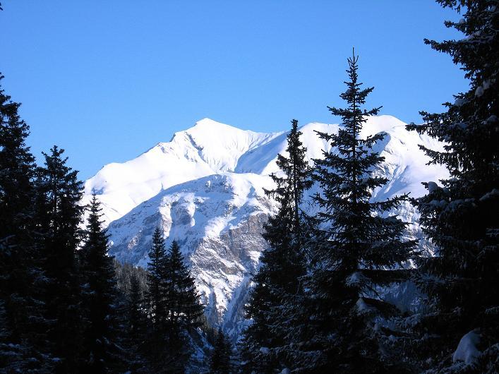 Foto: Andreas Koller / Ski Tour / Vom Zervreilasee auf das Frunthorn (3030m) / 09.01.2009 22:31:03