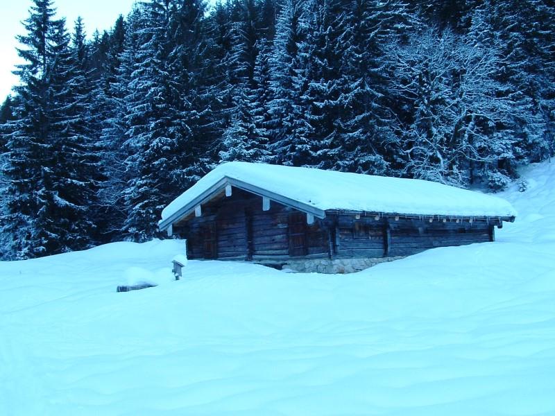 Foto: Johann Kussegg / Ski Tour / Kammerlinghorn (2484m) / an der Diensthütte der Mittereisalm / 09.01.2009 11:15:43