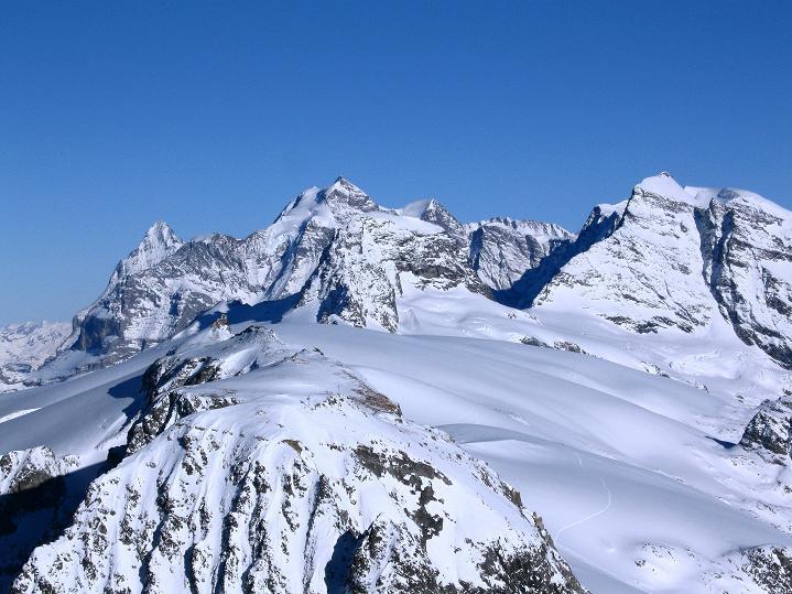 Foto: Andreas Koller / Ski Tour / Von der Lauchernalp aufs Hockenhorn (3293m) / Jungfraugruppe (4158 m) / 12.01.2009 19:28:59