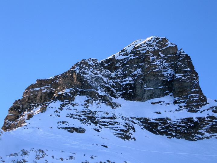 Foto: Andreas Koller / Ski Tour / Von der Lauchernalp aufs Hockenhorn (3293m) / Das Hockenhorn vom Hockengrat / 12.01.2009 19:22:28
