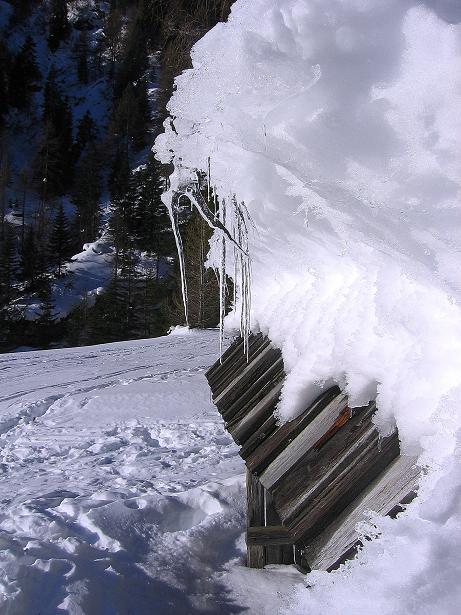 Foto: Andreas Koller / Ski Tour / Rassige Tour aufs Kleine Mosermandl (2538m) / 12.01.2009 19:16:43