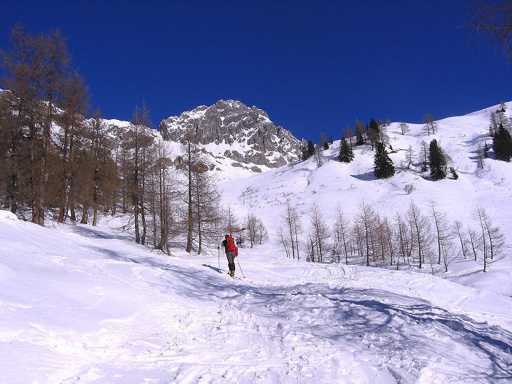 Foto: Andreas Koller / Ski Tour / Rassige Tour aufs Kleine Mosermandl (2538m) / 12.01.2009 19:16:19