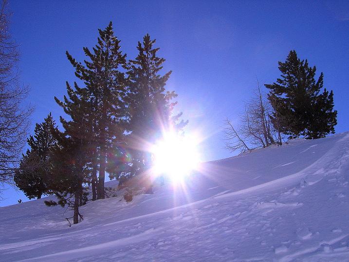 Foto: Andreas Koller / Ski Tour / Rassige Tour aufs Kleine Mosermandl (2538m) / 12.01.2009 19:15:49