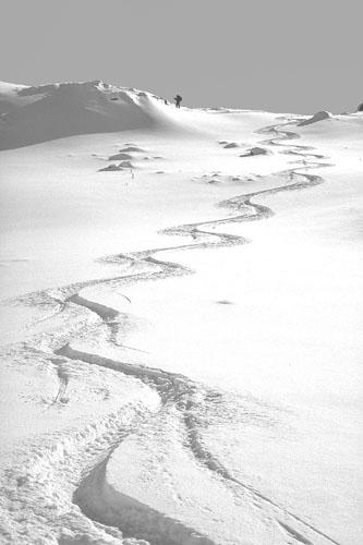 Foto: Kurt Schall / Ski Tour / PARÈ NEIRA, 2461 m / 15.01.2009 13:52:17