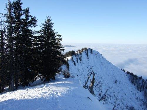 Foto: hofchri / Ski Tour / 4 Gipfeltour in der Osterhorngruppe ab der Gaißau / Grat vom Ochsenberg / 13.01.2009 12:34:18