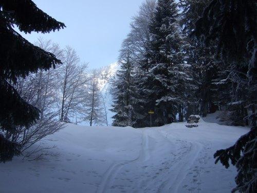Foto: hofchri / Ski Tour / 4 Gipfeltour in der Osterhorngruppe ab der Gaißau / zum Spielberg -  hinter Kreuz beginnt anspuchsvoller, steiler Abschnitt / 13.01.2009 12:35:22