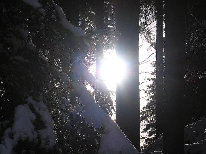 Foto: Andreas Koller / Ski Tour / Durch das Nappental auf die Kräuterin (1919m) / 18.01.2009 23:36:54
