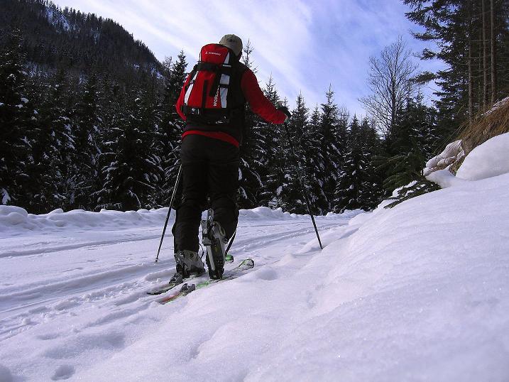 Foto: Andreas Koller / Ski Tour / Durch das Nappental auf die Kräuterin (1919m) / 18.01.2009 23:36:49