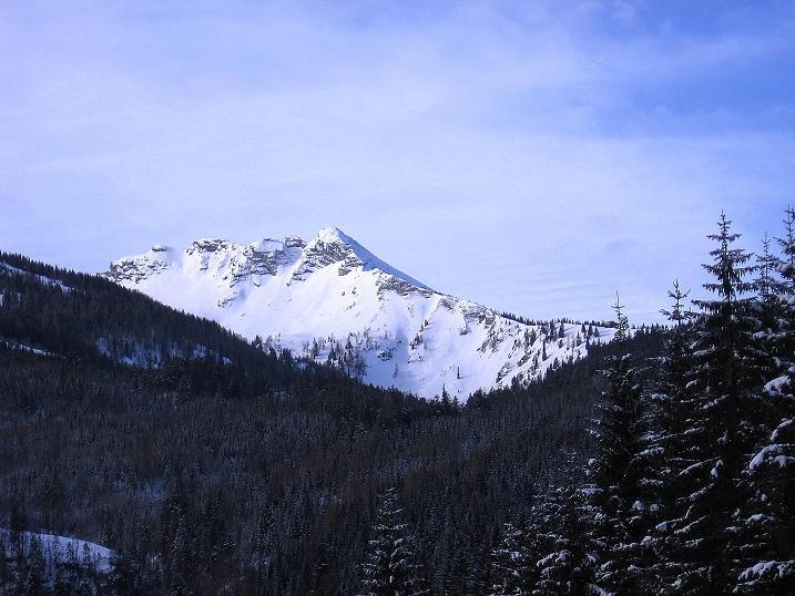 Foto: Andreas Koller / Ski Tour / Durch das Nappental auf die Kräuterin (1919m) / Erster Blick auf die Kräuterin / 18.01.2009 23:36:44