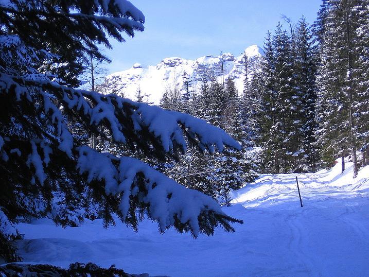 Foto: Andreas Koller / Ski Tour / Durch das Nappental auf die Kräuterin (1919m) / 18.01.2009 23:36:13