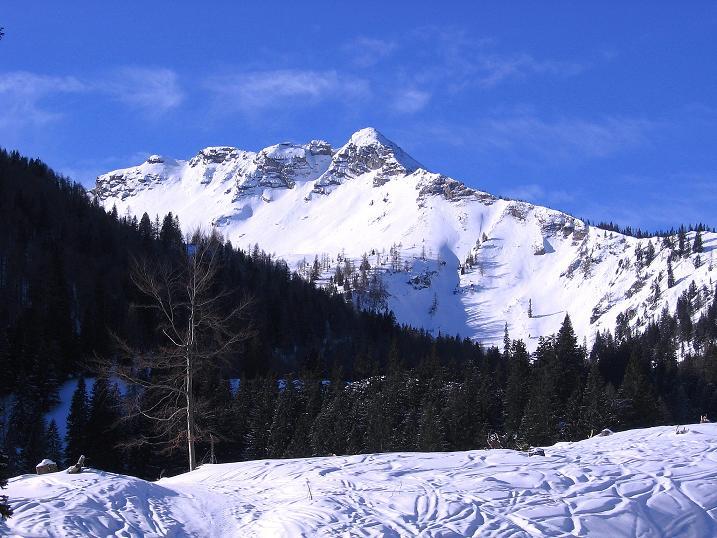 Foto: Andreas Koller / Ski Tour / Durch das Nappental auf die Kräuterin (1919m) / Der Fadenkamp (1804 m) / 18.01.2009 23:35:57