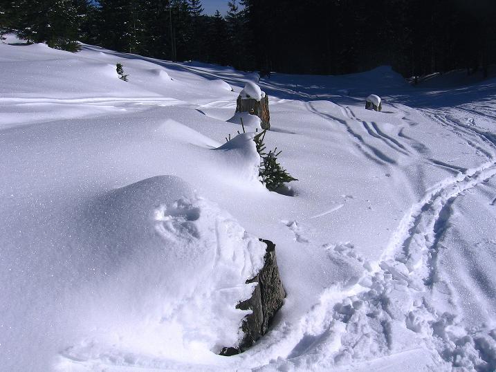 Foto: Andreas Koller / Ski Tour / Durch das Nappental auf die Kräuterin (1919m) / 18.01.2009 23:35:30