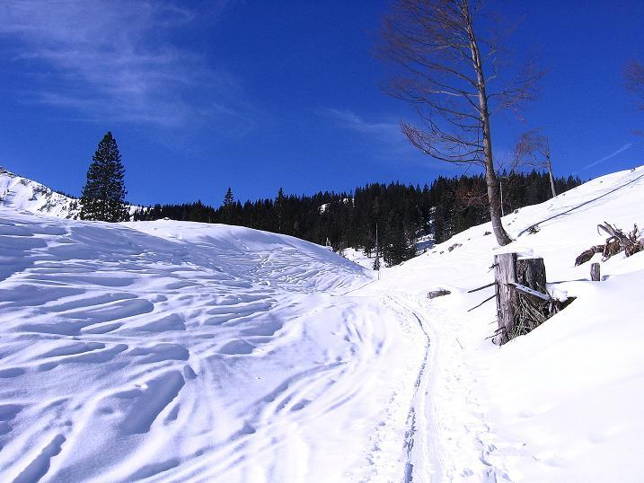 Foto: Andreas Koller / Ski Tour / Durch das Nappental auf die Kräuterin (1919m) / 18.01.2009 23:35:22