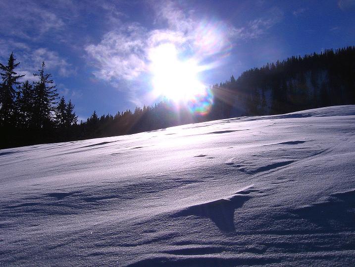 Foto: Andreas Koller / Ski Tour / Durch das Nappental auf die Kräuterin (1919m) / 18.01.2009 23:34:09
