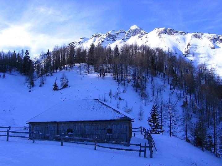 Foto: Andreas Koller / Ski Tour / Durch das Nappental auf die Kräuterin (1919m) / Bei der Almhütte Kräuterin / 18.01.2009 23:34:02