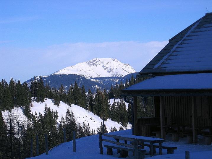 Foto: Andreas Koller / Ski Tour / Durch das Nappental auf die Kräuterin (1919m) / Blick von der Almhütte Kräuterin zum Ötscher (1894 m) / 18.01.2009 23:33:35