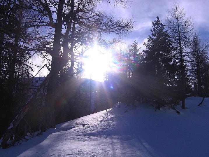 Foto: Andreas Koller / Ski Tour / Durch das Nappental auf die Kräuterin (1919m) / 18.01.2009 23:32:56