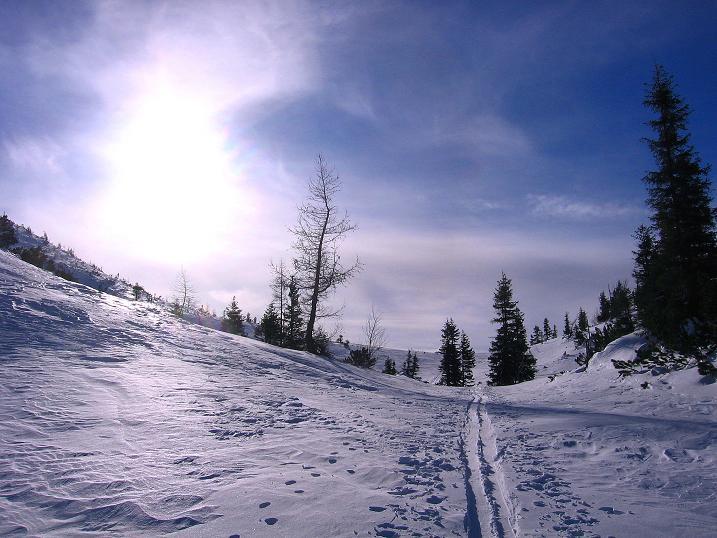Foto: Andreas Koller / Ski Tour / Durch das Nappental auf die Kräuterin (1919m) / 18.01.2009 23:32:20