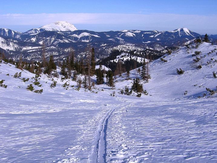 Foto: Andreas Koller / Ski Tour / Durch das Nappental auf die Kräuterin (1919m) / Rückblick zum Ötscher (1894 m) und zur Gemeindealpe (1629 m) / 18.01.2009 23:32:13