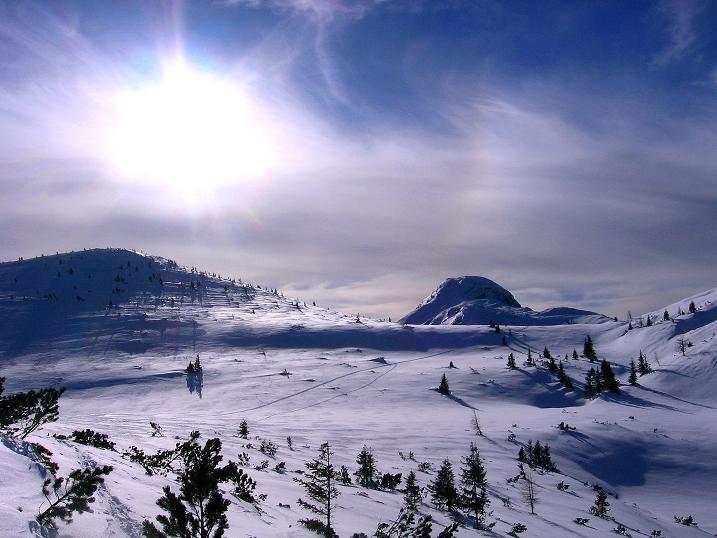 Foto: Andreas Koller / Ski Tour / Durch das Nappental auf die Kräuterin (1919m) / 18.01.2009 23:30:52