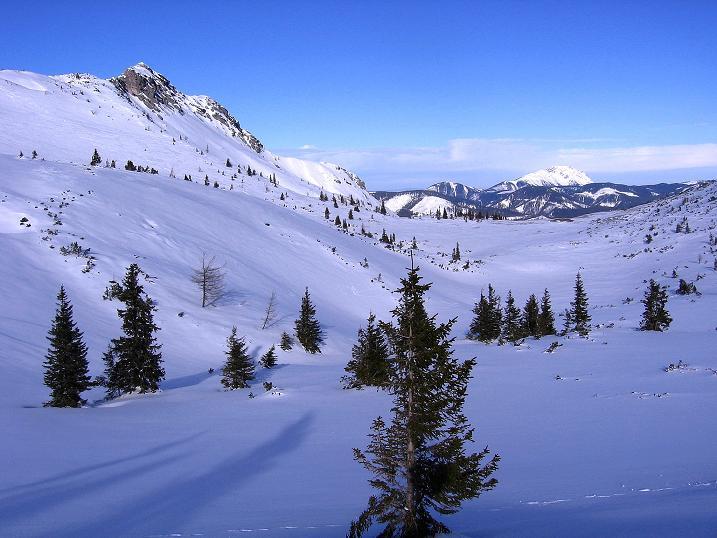 Foto: Andreas Koller / Ski Tour / Durch das Nappental auf die Kräuterin (1919m) / 18.01.2009 23:30:35