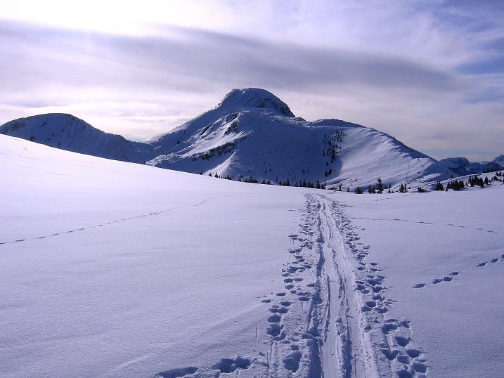 Foto: Andreas Koller / Ski Tour / Durch das Nappental auf die Kräuterin (1919m) / 18.01.2009 23:30:17
