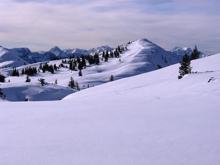 Foto: Andreas Koller / Ski Tour / Durch das Nappental auf die Kräuterin (1919m) / 18.01.2009 23:30:00