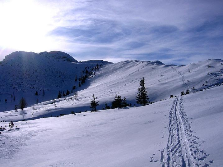 Foto: Andreas Koller / Ski Tour / Durch das Nappental auf die Kräuterin (1919m) / 18.01.2009 23:29:45