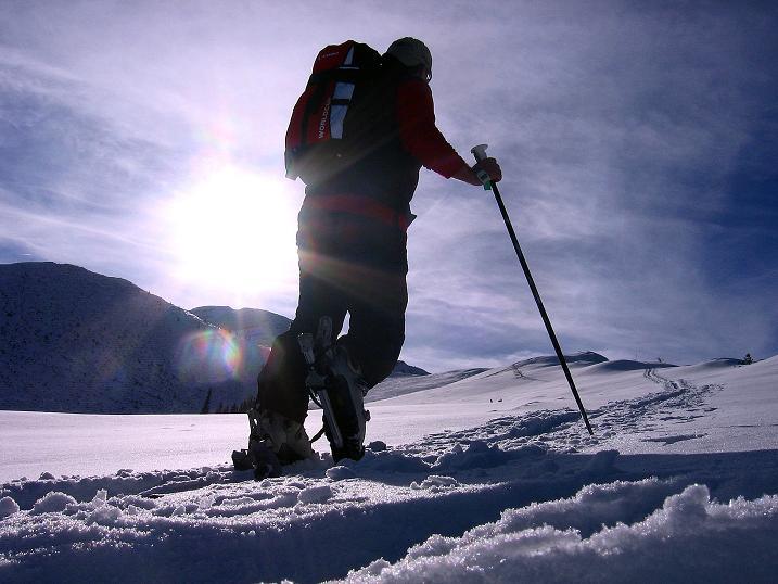 Foto: Andreas Koller / Ski Tour / Durch das Nappental auf die Kräuterin (1919m) / 18.01.2009 23:29:28
