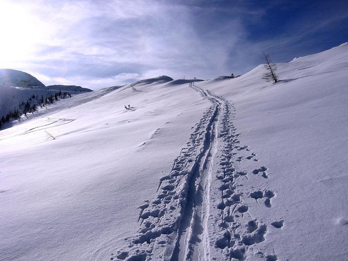 Foto: Andreas Koller / Ski Tour / Durch das Nappental auf die Kräuterin (1919m) / 18.01.2009 23:29:20