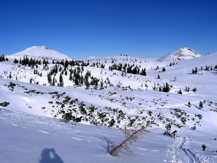 Foto: Andreas Koller / Ski Tour / Durch das Nappental auf die Kräuterin (1919m) / 18.01.2009 23:29:13