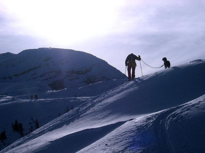 Foto: Andreas Koller / Ski Tour / Durch das Nappental auf die Kräuterin (1919m) / 18.01.2009 23:28:43