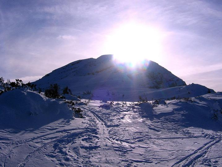 Foto: Andreas Koller / Ski Tour / Durch das Nappental auf die Kräuterin (1919m) / 18.01.2009 23:28:28
