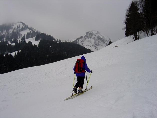 Foto: Manfred Karl / Ski Tour / Wertacher Hörnle, 1685m bzw 1695m / Das Hörnle - eine richtige Schlechtwettertour / 22.01.2009 22:30:47