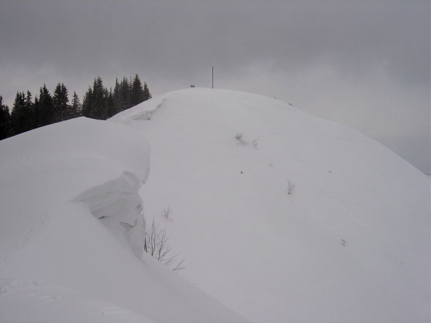 Foto: Manfred Karl / Ski Tour / Wertacher Hörnle, 1685m bzw 1695m / Hörnlegipfel / 22.01.2009 22:29:32
