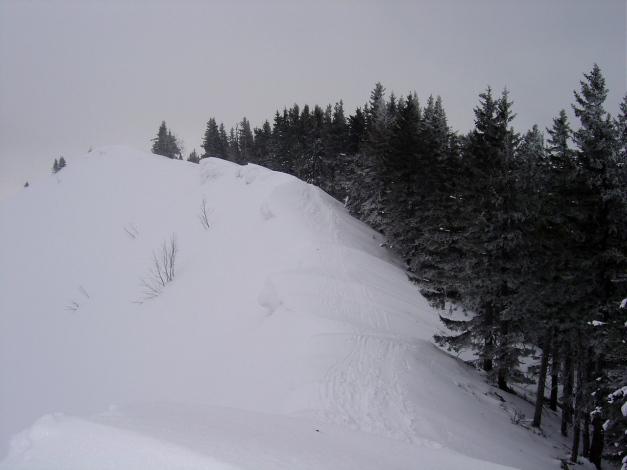 Foto: Manfred Karl / Ski Tour / Wertacher Hörnle, 1685m bzw 1695m / Gipfelgrat / 22.01.2009 22:29:08