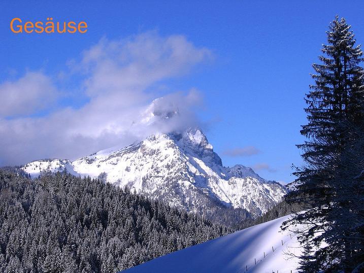 Foto: Andreas Koller / Ski Tour / Über den Leobner (2036m) / Admonter Reichenstein (2251 m) vom Gscheidegger / 25.01.2009 23:53:18