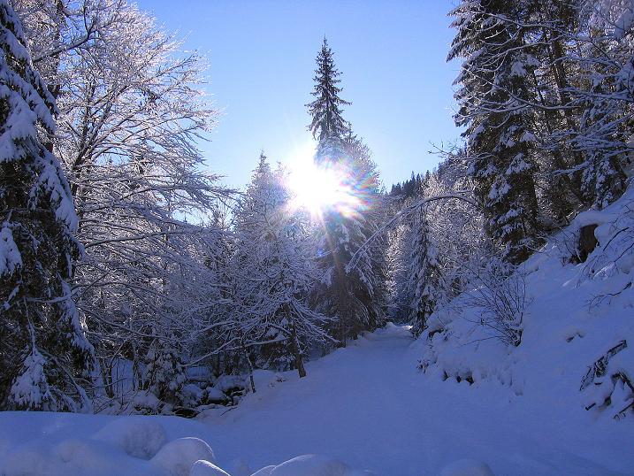 Foto: Andreas Koller / Ski Tour / Über den Leobner (2036m) / 25.01.2009 23:52:58