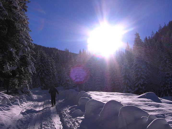 Foto: Andreas Koller / Ski Tour / Über den Leobner (2036m) / 25.01.2009 23:52:39