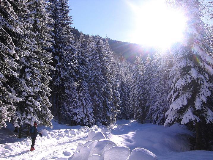 Foto: Andreas Koller / Ski Tour / Über den Leobner (2036m) / 25.01.2009 23:52:10