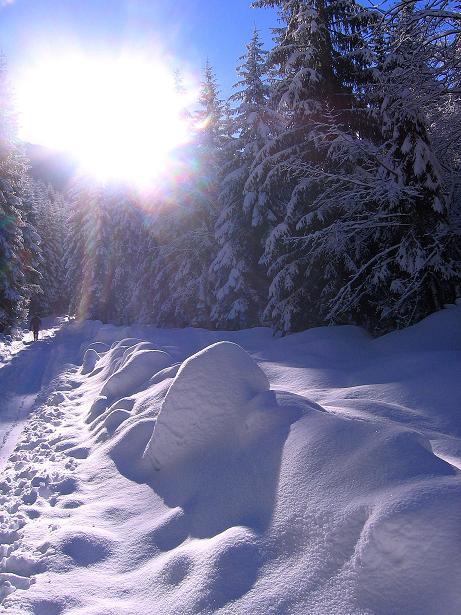 Foto: Andreas Koller / Ski Tour / Über den Leobner (2036m) / 25.01.2009 23:51:55