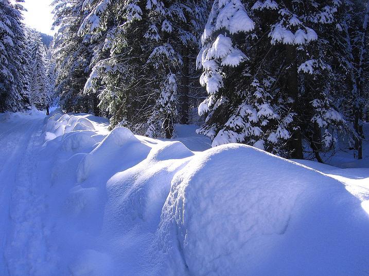 Foto: Andreas Koller / Ski Tour / Über den Leobner (2036m) / 25.01.2009 23:51:38