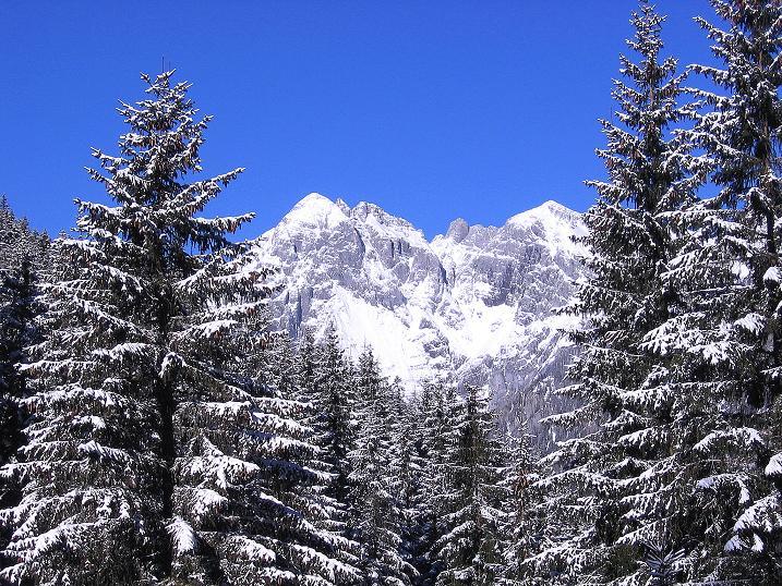 Foto: Andreas Koller / Ski Tour / Über den Leobner (2036m) / 25.01.2009 23:51:21