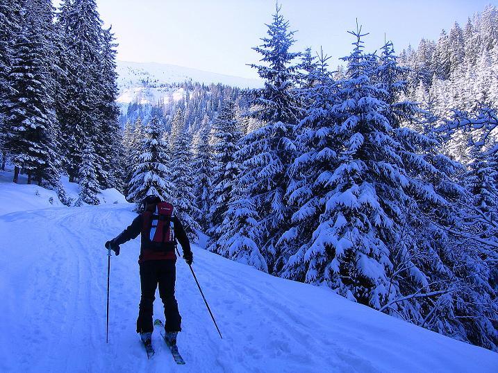 Foto: Andreas Koller / Ski Tour / Über den Leobner (2036m) / 25.01.2009 23:50:48