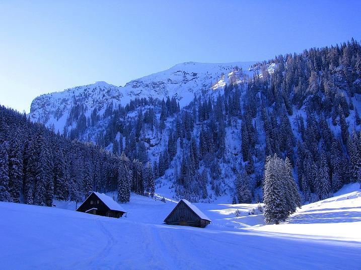 Foto: Andreas Koller / Ski Tour / Über den Leobner (2036m) / Die Grössingeralm / 25.01.2009 23:50:38